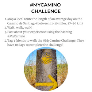 My Camino Challenge rules