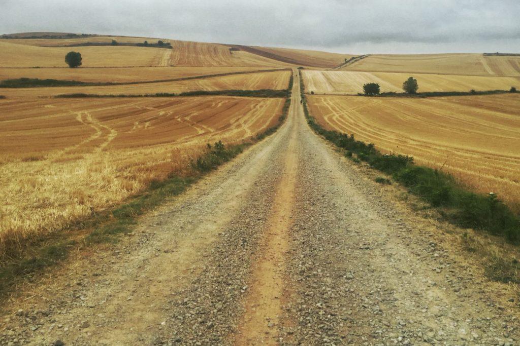 Pilgrimage & Travel Coach: a path