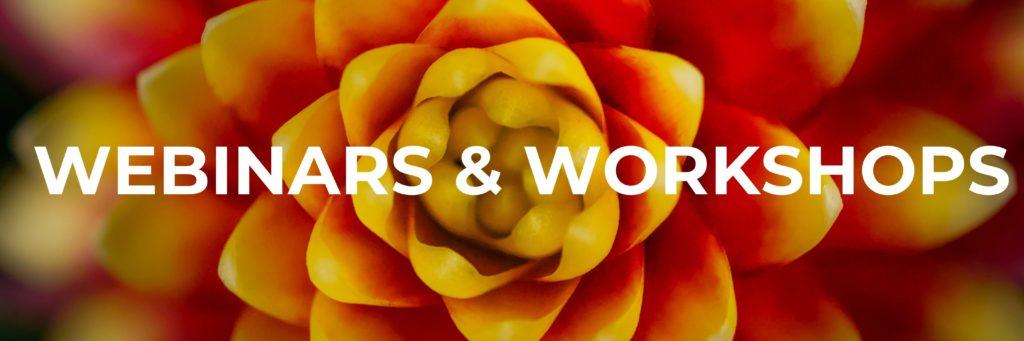 Webinars and workshops banner