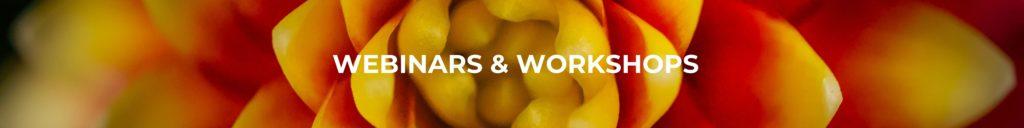 Webinars & Workshops