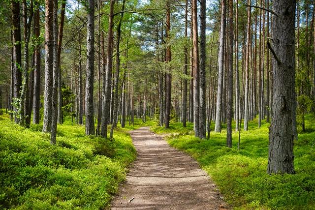 Spiritual Pilgrimage: Travel + Self Growth